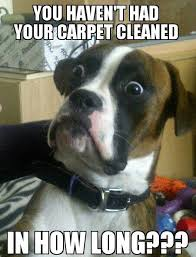 Carpet Cleaning Meme - carpet tru clean