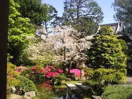 San Francisco Photo Gallery Japanese Tea Garden Tony Quarrington