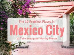 Ivy And Stone Home On Instagram The 10 Prettiest Places In Mexico City To Take Instagram Worthy