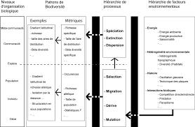 Approches macro écologique et phylogéographique pour démªler