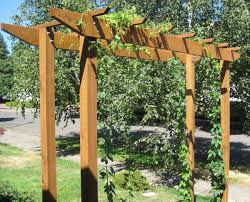 Garden Trellis Design by Best 25 Hops Trellis Ideas On Pinterest Great Ideas Hops Plant
