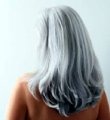 highlights for grey hair pictures white highlights hair pictures hairstyles short hairstyles
