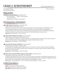 Best Professional Resume Format Cv Writing Computer Skills