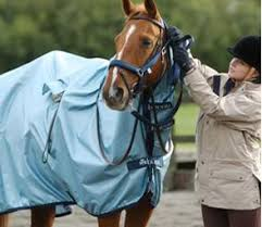 Buccas Rugs Bucas Rugs Horse Rugs Online High Performance From Irish
