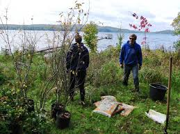 native plant sale muskoka conservancy columns u2013 our changing seasons