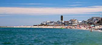 Massachusetts beaches images Dog friendly beach with or without sand brant rock fido loves jpg