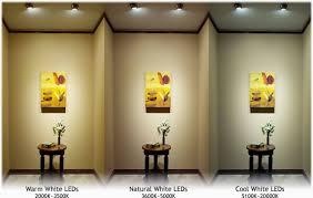 cool white lights color temperature origin and application birddog lighting