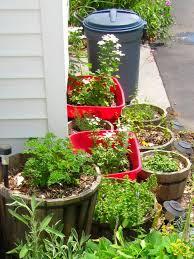 Urban Garden Supply - 233 best gardening images on pinterest gardening tips veggie