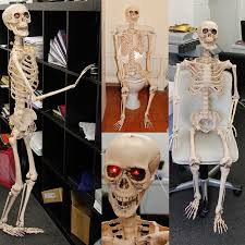 Halloween Posable Skeleton Poseable Skeleton