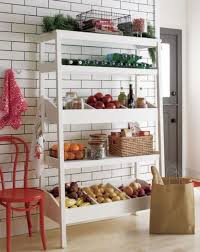 Wood Kitchen Shelves by Best 25 Free Standing Pantry Ideas Only On Pinterest Standing