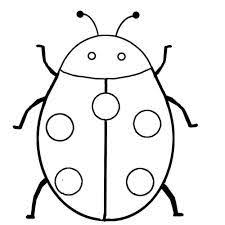 18 grasshopper coloring pages images coloring