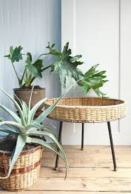 Plants Indoors by Plant Stand Wicker Plant Stands Indoor Jeco White Stand Tags