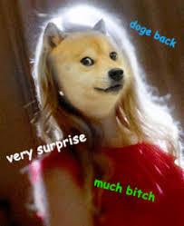 Doge Meme Tumblr - surprise bitch doge know your meme