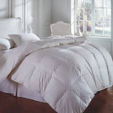 Down Comforter Protective Covers Downright Wayfair