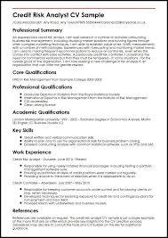 Resume For Analytics Job by Credit Risk Analyst Cv Sample Myperfectcv