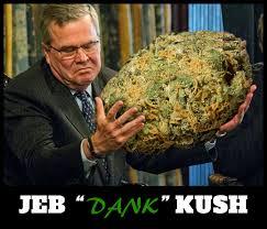 Bush Memes - jeb kush meme dank weed meme jeb bush memes on pot