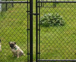 pergola dog fencing stunning dog fencing and kennels u201a lovely dog