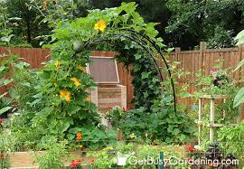 Garden Trellis Archway Diy Garden Trellis Arch Diy Do It Your Self