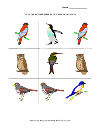 circle the matching picture worksheets birds kidschoolz