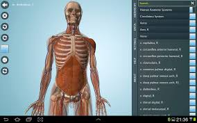 Human Anatomy Pdf Books Free Download Anatomy 3d Anatronica Android Apps On Google Play