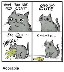 So Cute Meme - wow you are so cute so so omg so cute o z o c cvte il adorable