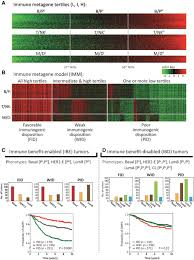 immunogenic subtypes of breast cancer delineated by gene