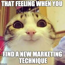 Dat Ass Cat Meme - 27 best funny friday images on pinterest funny friday memes of