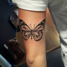 82 best butterfly ideas meaning images on