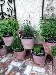 Herb Garden Design Ideas Potted Herb Garden Elcorazon Club
