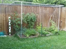 Garden Netting Trellis Chic Design Garden Netting Lowes Modest Dalen Trellis Netting View