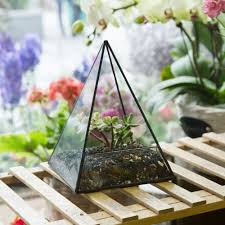 best image of glass terrarium containers all can download all