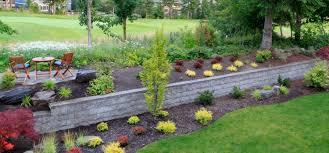 build your dream backyard sanctuary
