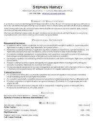 Sample Resume It Professional by Example Of Cv Volunteer