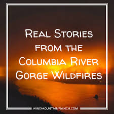 Wildfire Columbia Gorge Oregon by Real Stories From The Columbia River Gorge Wildfires Wind