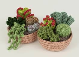 cute succulents succulent collections 1 and 2 eight crochet patterns planetjune
