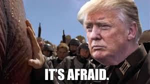 Afraid Meme - three million memes the donald