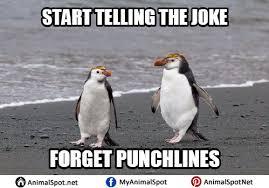 Pittsburgh Penguins Memes - penguin memes
