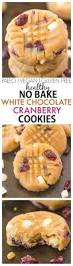 best 25 healthy no bake cookies ideas on pinterest paleo no