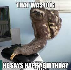 Happy Birthday Dog Meme - 52 ultimate birthday memes