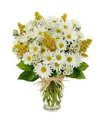 cheap flowers for weddings 9 best weddings august images on daisies