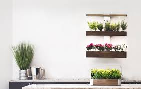 Indoor Spice Garden by ēdn Intelligent Indoor Gardens