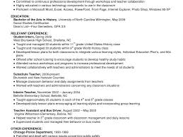 example of a summary in a resume absolutely design example of resume summary 15 how to write a download example of resume summary