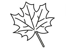 printable leaves coloring pages kids coloring