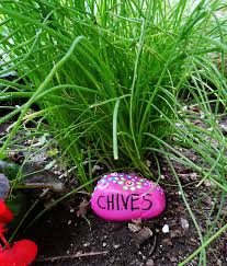 garden markers rock garden markers paint rocks to make markers for your plants