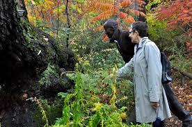 Urban Garden Woodland Hills - native flora garden brooklyn botanic garden