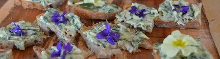 cuisine plantes sauvages ateliers cueillette et cuisine des plantes sauvages printemps