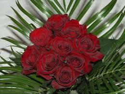 imagenes de feliz inicio de semana con rosas hay alguien más que sienta esta pasión por las rosas rojas como la