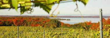 Michigan Wineries Map by Traverse City Wineries In Fall Vineyards U0026 Tours