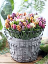 tulip bouquets a tulip frenzy flower and bouquet inspiration part 2 wedding