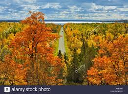 country road in autumn color manitoulin island ontario canada
